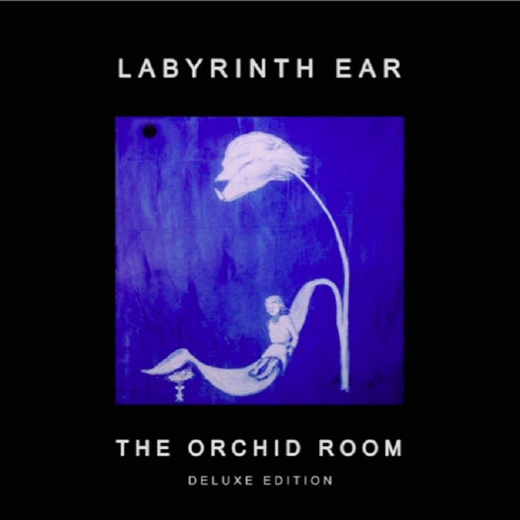 media | Under the Radar - Music Magazine Labyrinth Ear Band