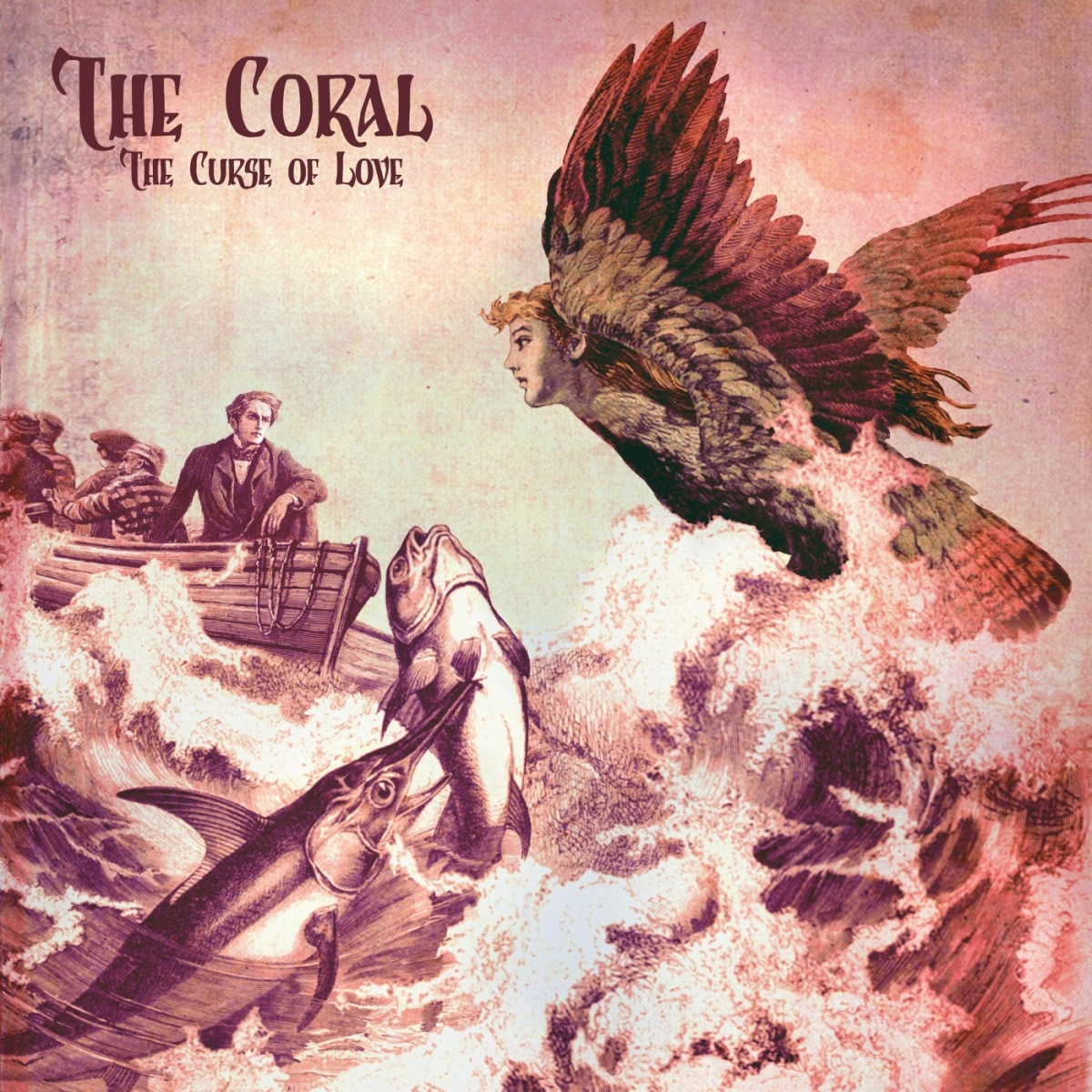 The Curse Of Love By The Coral Album Review The Line