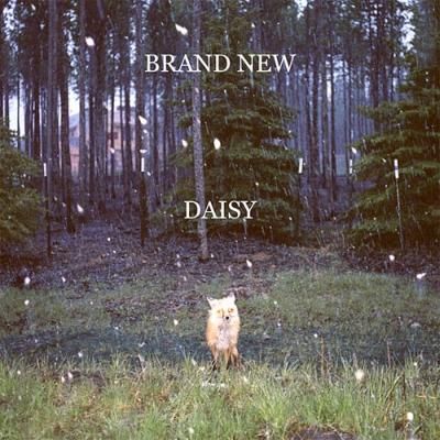 brand_new_daisy