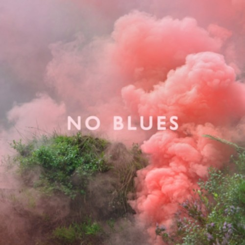 los-campesinos-no-blues-album