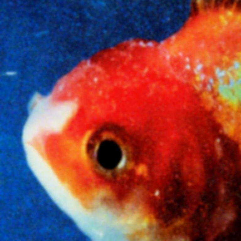 <em>Big Fish Theory</em> by Vince Staples