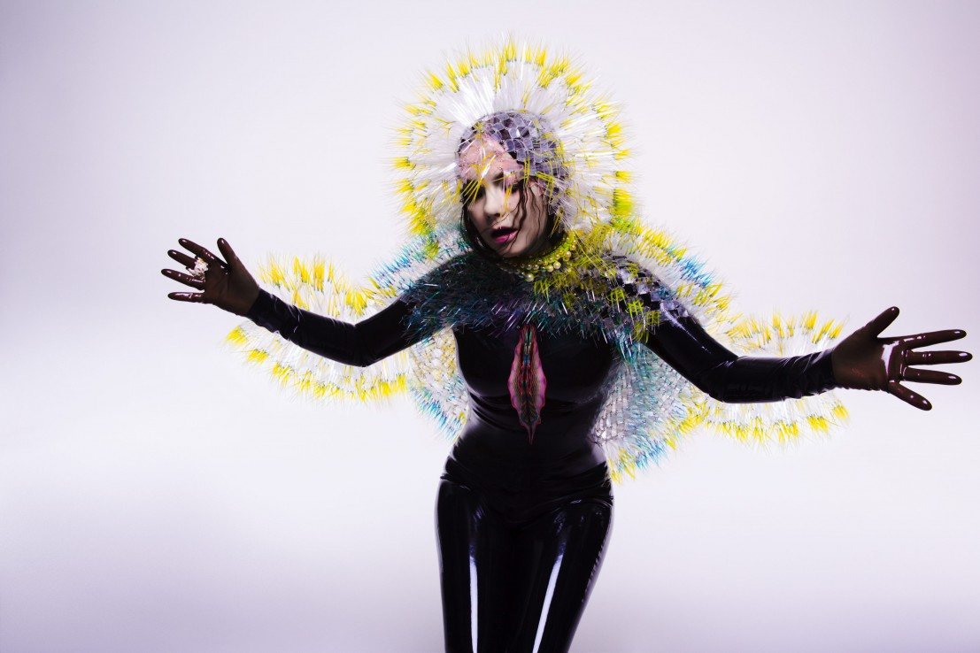 Bjork Vulnicura press shot