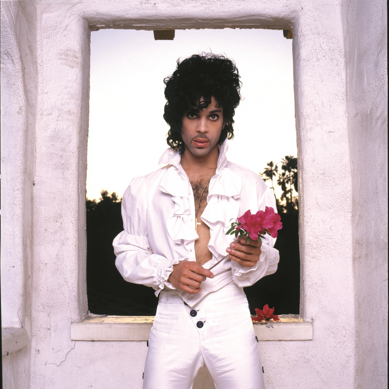 """Hear """"Electric Intercourse"""", a stunning unreleased track from Prince's Purple Rain sessions"""